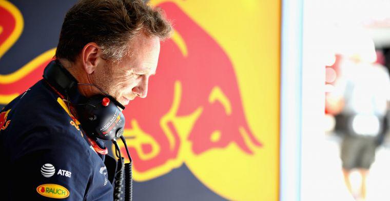 Red Bull: 2019 gaat een tussenjaar worden