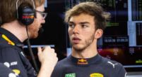 "Image: Gasly won't be ""second driver"" at Red Bull in 2019"