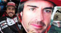 "Image: Alonso ""very, very proud"" after winning 24 Hours of Daytona"