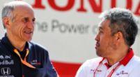 Afbeelding: Franz Tost verdedigt Vettel's ongelukken van de afgelopen paar jaar