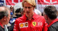 Afbeelding: Hartley op de reservelijst bij twee F1-teams