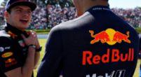 """Afbeelding: Doornbos streng: """"Maar Red Bull zal dat ook afkeuren, Horner is een winnaar"""""""