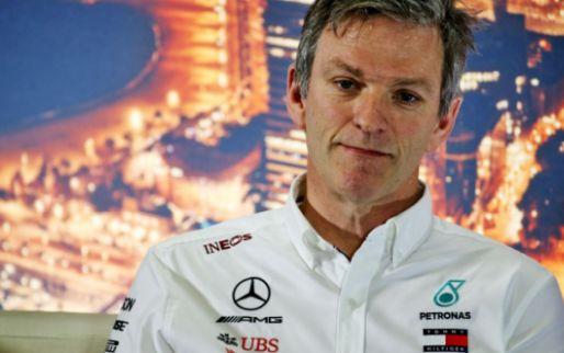 Mercedes heeft de FIA te kijk gezet met DAS-systeem