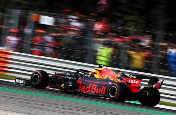 Manager Verstappen: There's no role for Jos and me there.
