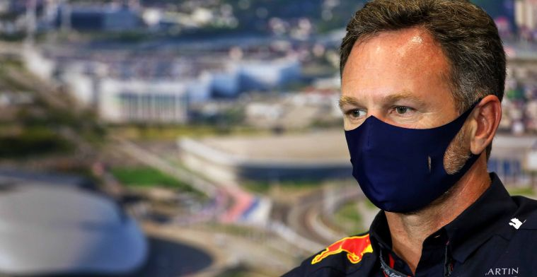 Horner: He loses his racing licence at the slightest error