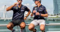 Afbeelding: Ricciardo zou andere keuze maken dan Verstappen: 'Dan was ik weggereden'